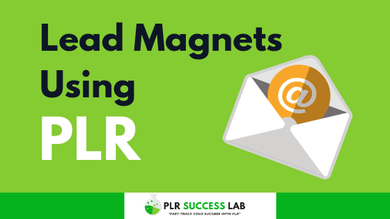 5 smart ways to create lead magnets using plr content