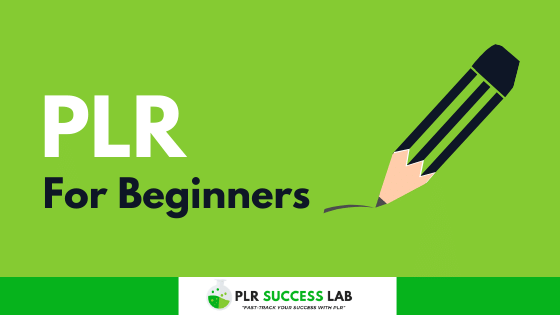 plr for beginners the complete guide